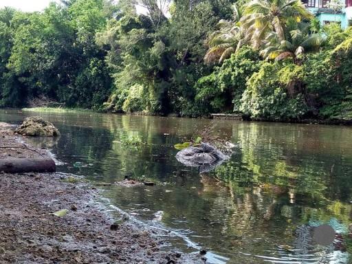 Cuando el río se desorbita, todo lo que deja es fango
