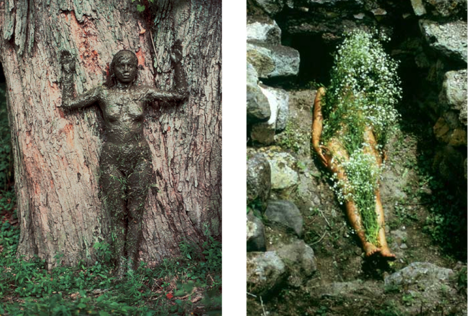 Tree Of Life/ Image From Yagul/ Silueta series, Body Art, 1973–77/ Ana Mendieta.