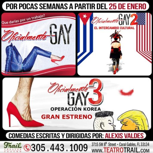 Cartel de Oficialmente Gay