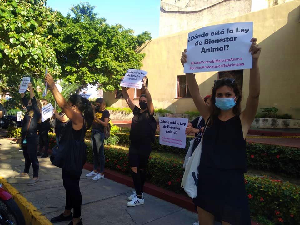 Protesta frente al MINAGRI