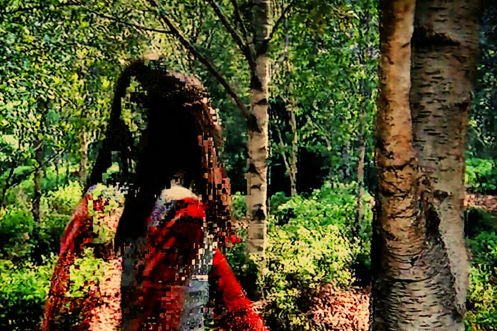 Juan-Sí González. Alterations: Mental Models. «Lost in the Forest».